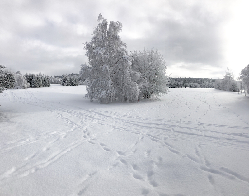 Čekáme na novou nadílku sněhu