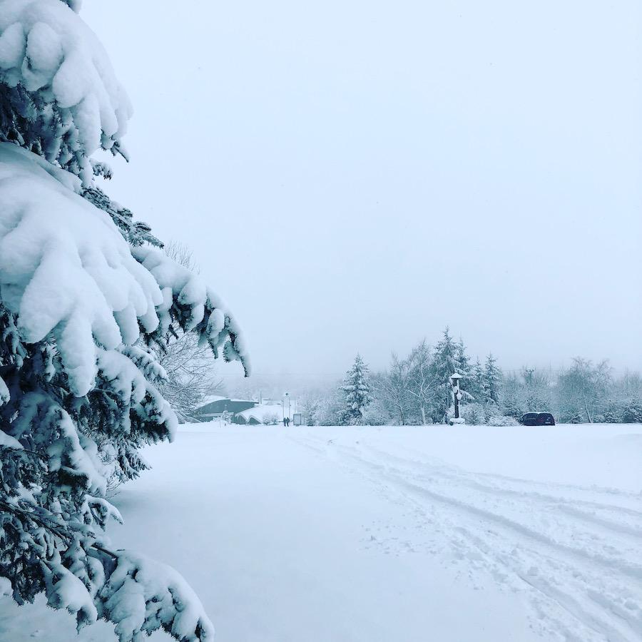 Sněhu je dostatek a Kořenecký golfový okruh je otevřen